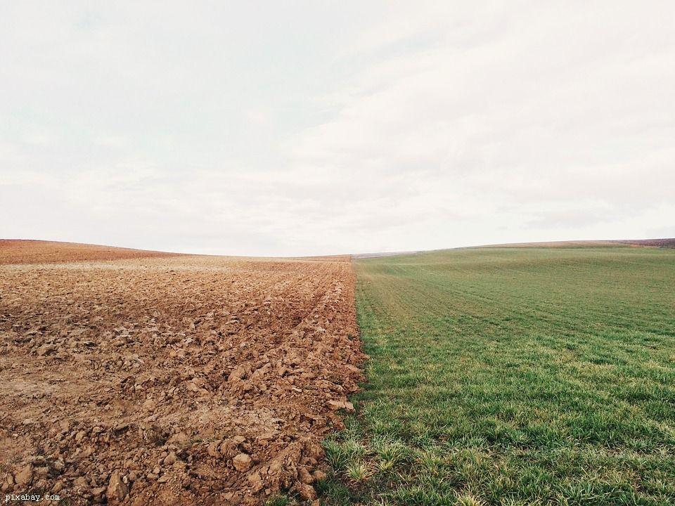 nowa wspólna polityk rolna zielony ład - grafika wpisu