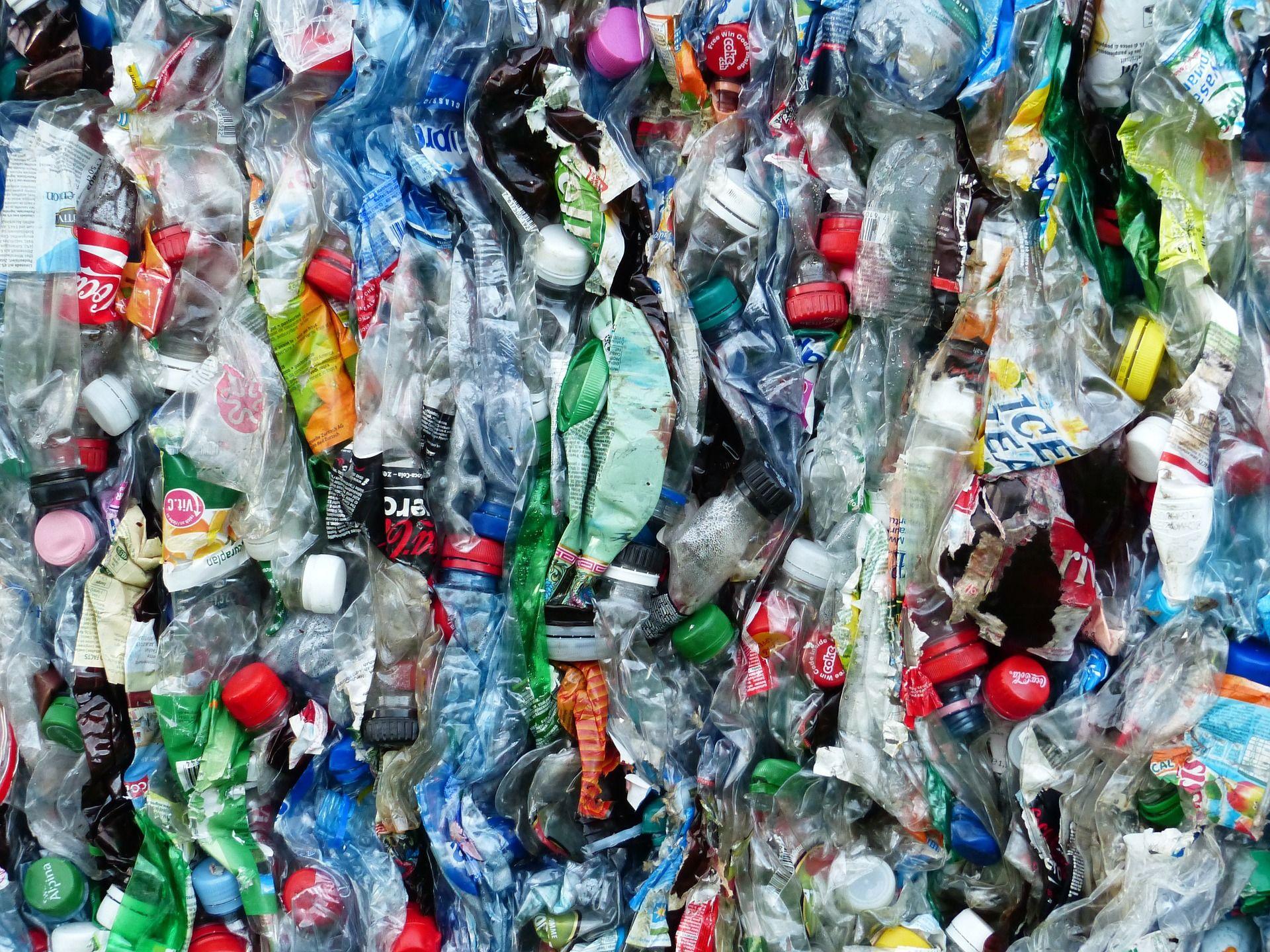 głupota zielonej polityki odpadowej - grafika wpisu